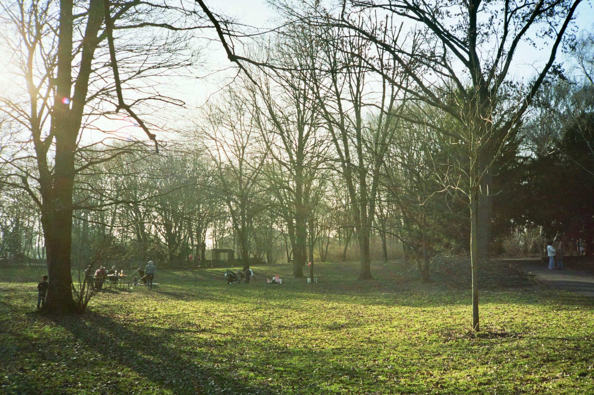 Berlin Humboldthain park sun green
