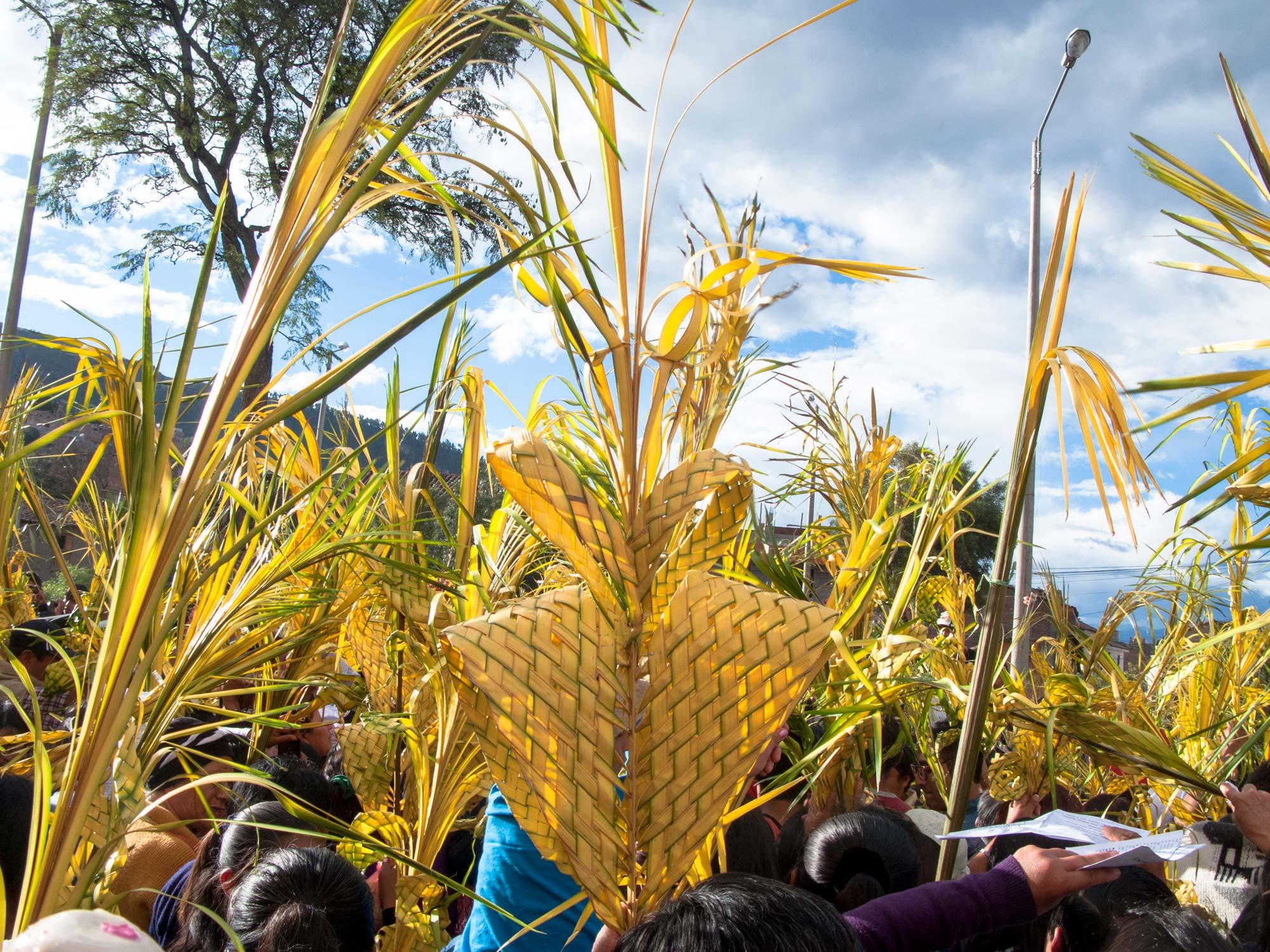 Peru Ayacucho Seman santa palms