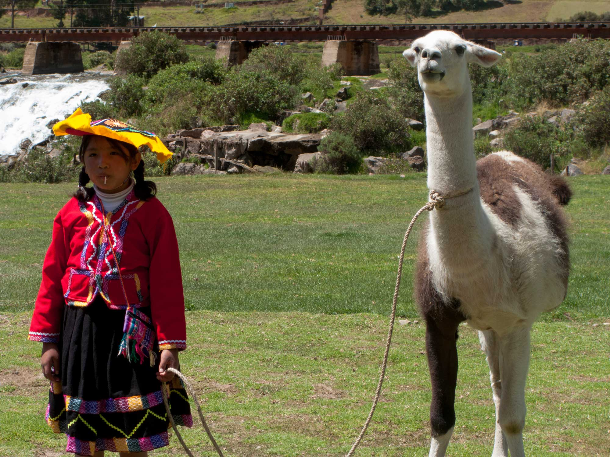 Peru Puno Cusco kid with her llama
