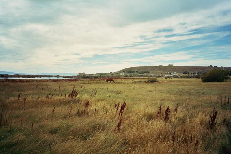 Argentina Patagonia Calafate Laguna Nimez