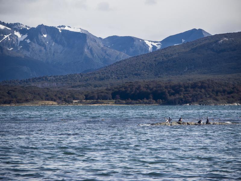 Argentina ushuaia national park tierra del fuego lake