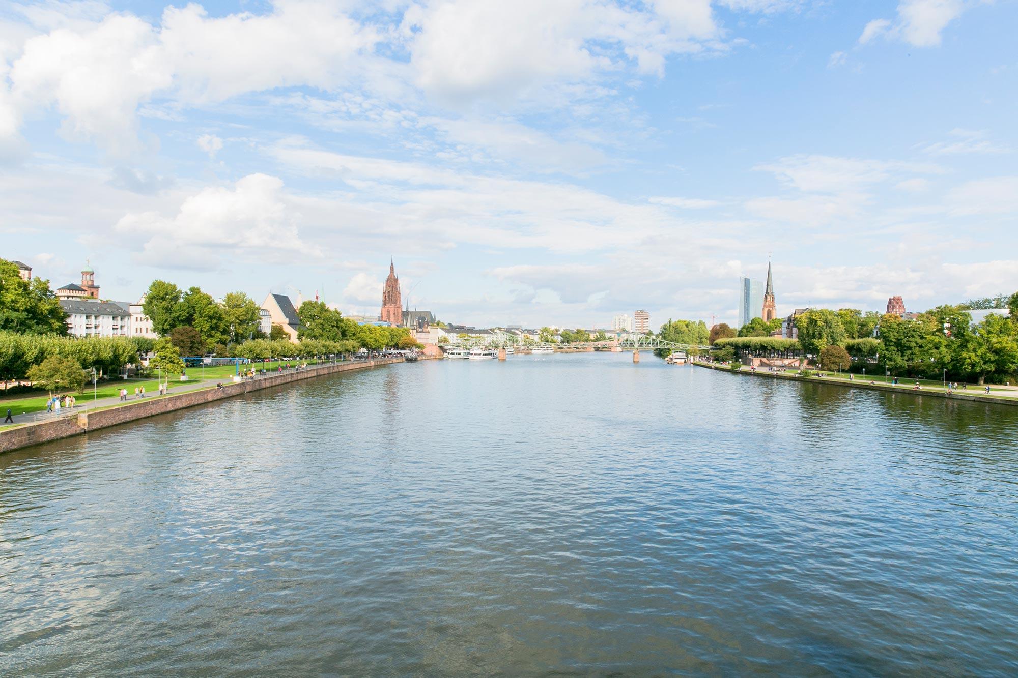 main river view frankfurt
