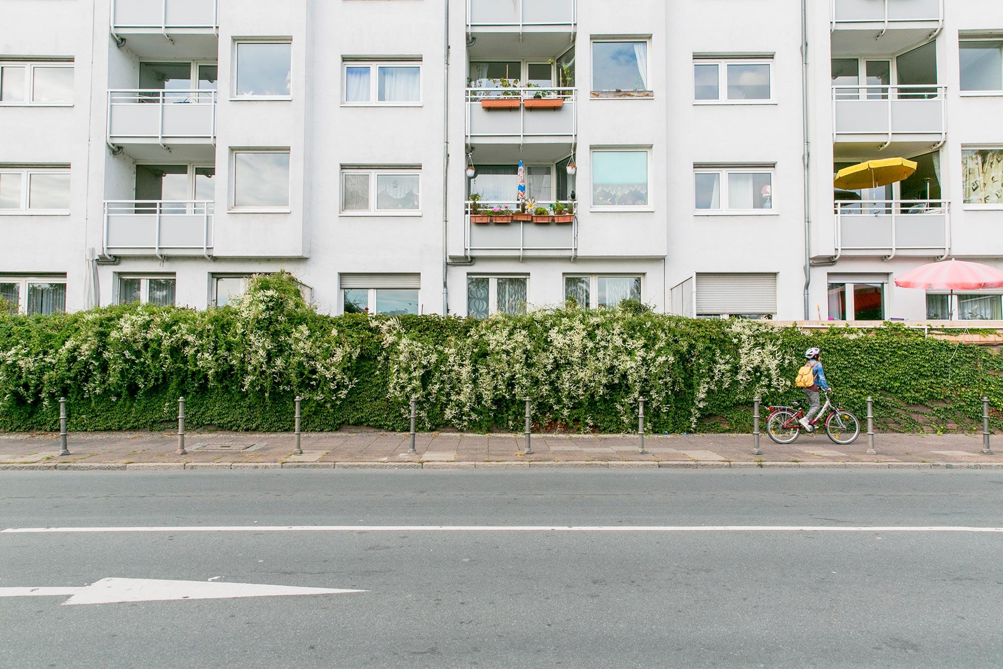 kid biking on frankfurt's street
