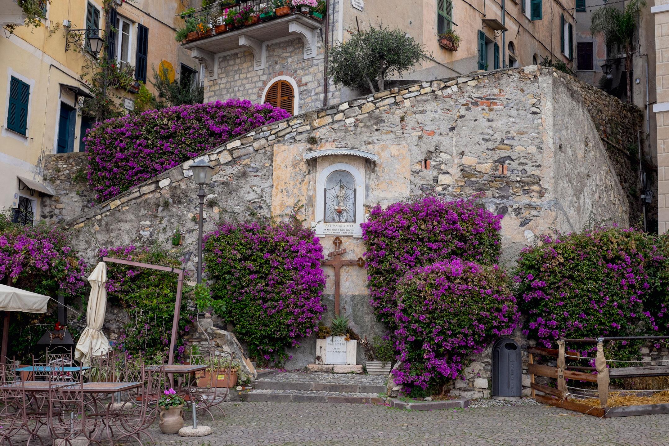 Italy Liguria Cervo square flowers