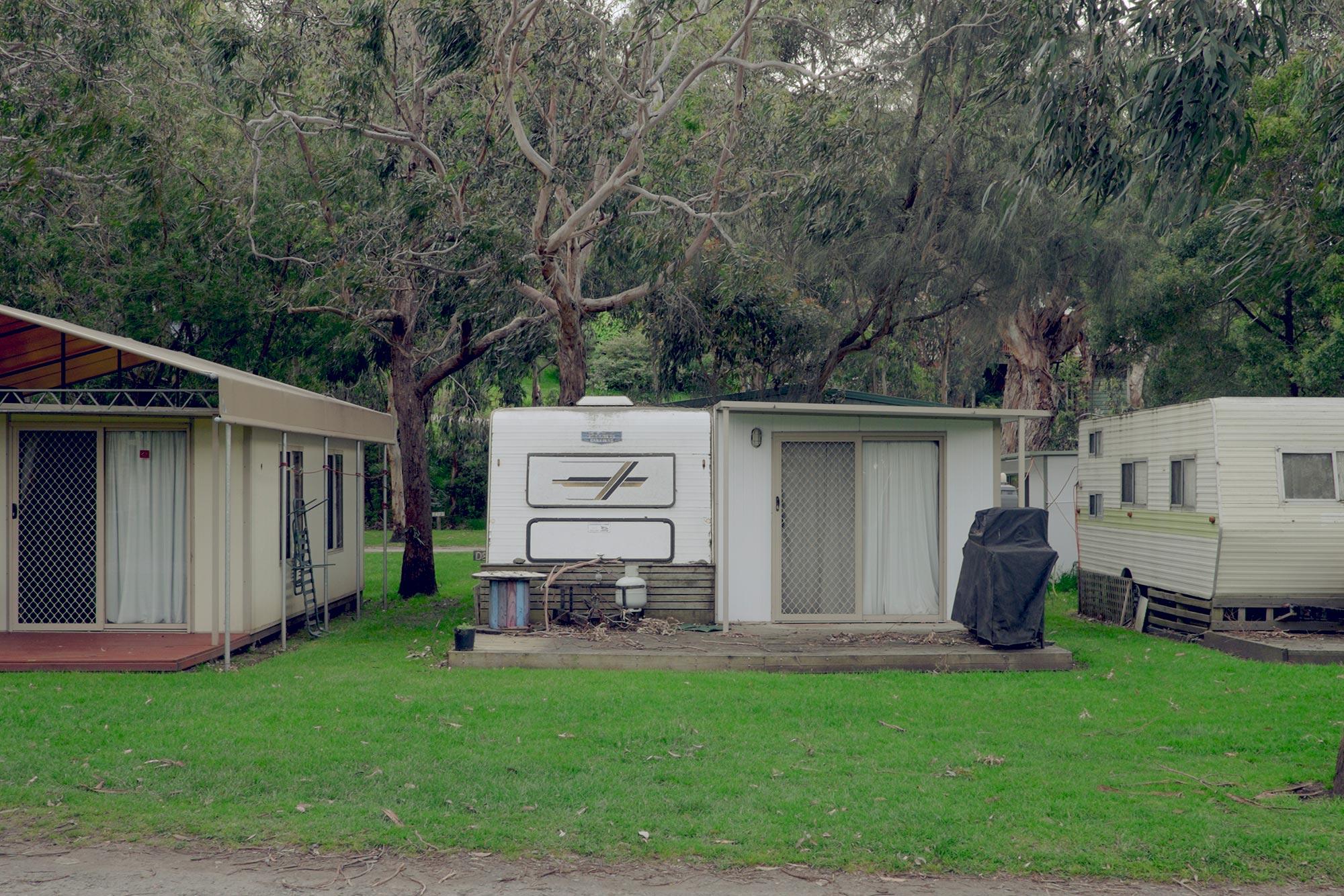 australia-melbourne-great-ocean-road-kennet-river-holiday-park-koala6