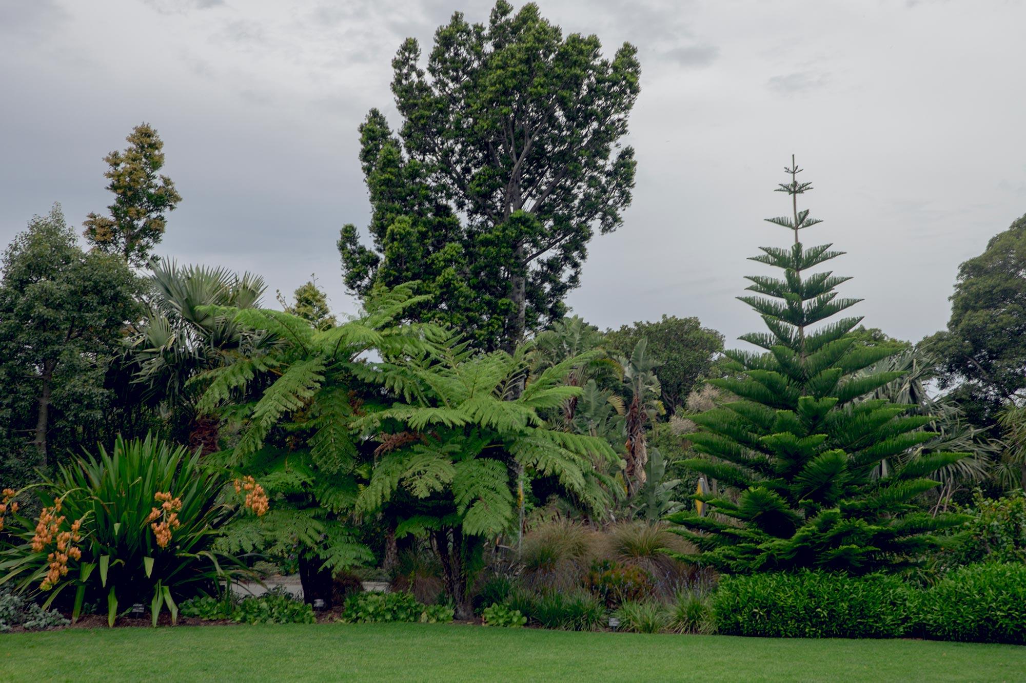 australia-melbourne-royal-botanic-gardens2