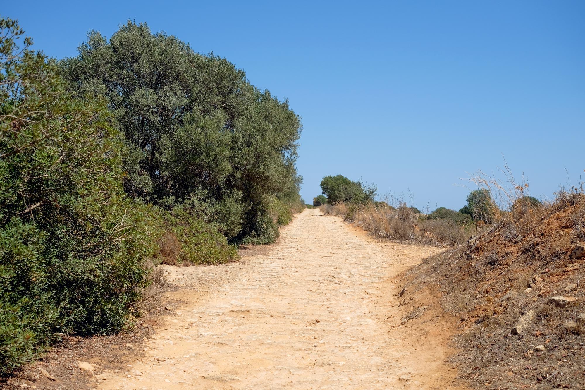 italia-sicilia-calamosche6